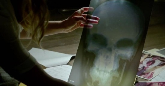 Possible Punisher Skull Sighted.